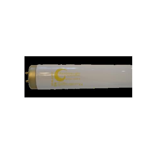 Cosmedico - N 250 GY 9,5 for Ergoline
